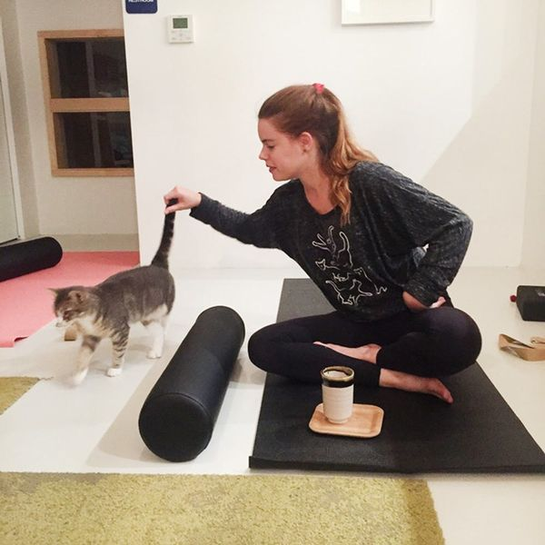 I Went to a Cat Yoga Class. This Is What Happened.