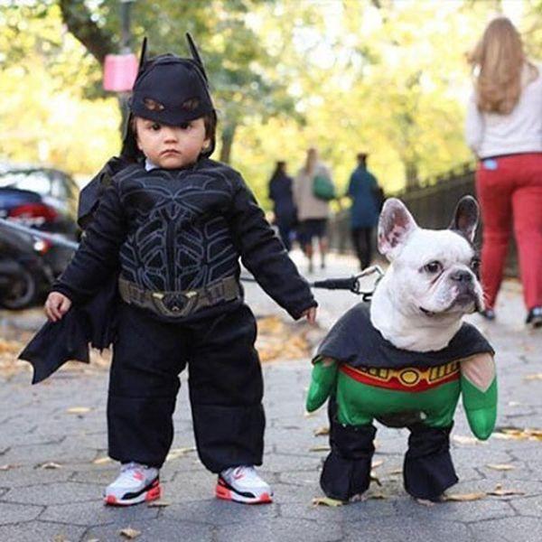 22 Halloween Costume Ideas Every Dog + Dog Owner Needs