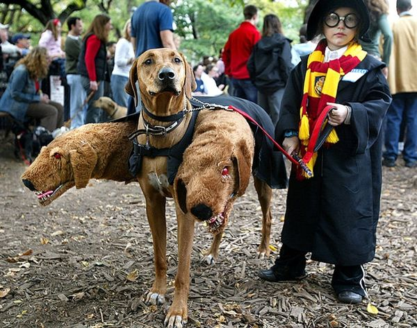 11 Harry Potter Costumes to Honor J.K. Rowling's Latest Story