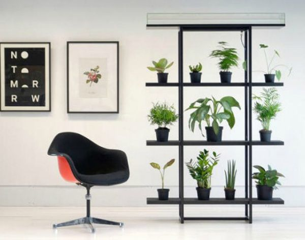 Never Worry About Your Plants Again With This Self-Watering Wall
