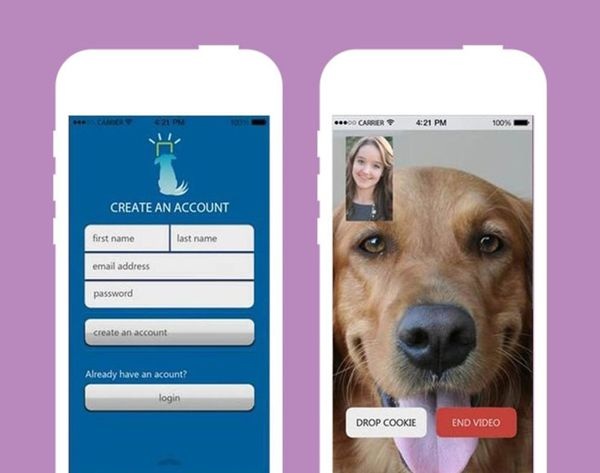 Bow WOW! iCPooch Lets You Facetime With Fido
