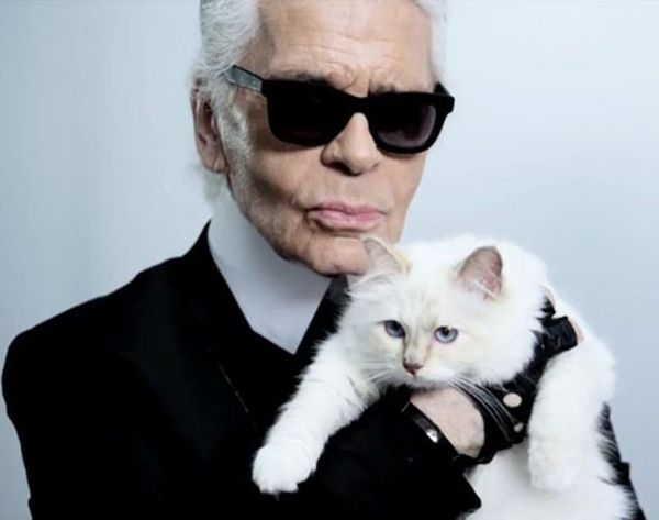 WTF: Karl Lagerfeld's Cat Has Her Own Collection