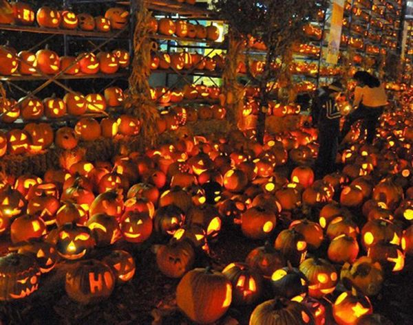 10 Jack-o'-Lantern Festivals You Have to See to Believe