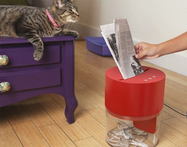 How to Make Kitty Litter At Home