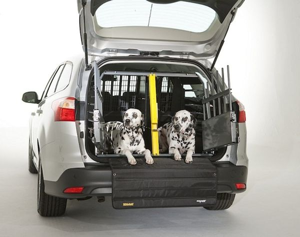 Keep Your Puppy Protected in the Car With the Safest Crate Ever