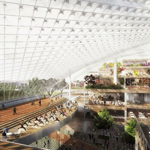Google's New Offices Will Blow Your Mind