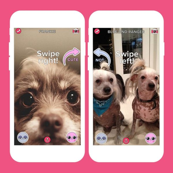 5 Best Apps of the Week: An App for Looking at Cute Pets All Day + More!