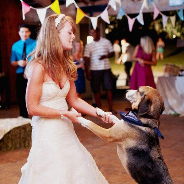 13 Ways to Give Your Pet a Role in Your Wedding