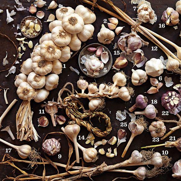 Kitchen Hack Alert: How to Peel Garlic in 10 Seconds