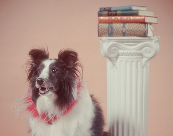 Photographer Recreates an '80s Portrait Studio and It's Awesome