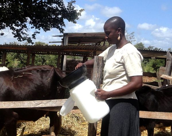How a Redesigned Milk Pail Will Change Food Distribution in Kenya