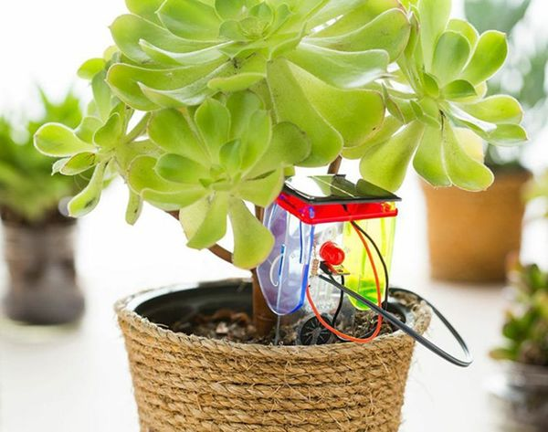 This Gadget Will Take Care of Your Plants for You