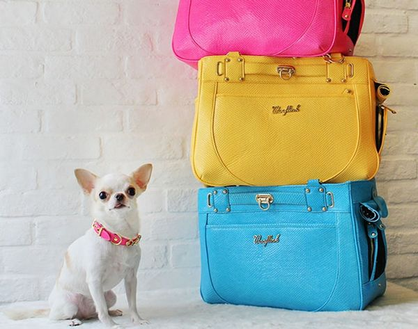 20 Smart and Stylish Pet Carriers