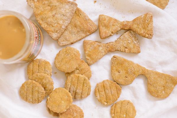 Your Pup Will Love Our Pumpkin Peanut Butter Dog Treats