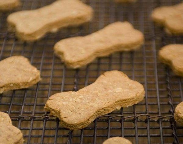 12 Recipes for Homemade Dog Treats