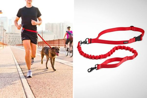 6 Gadgets to Help You and Your Dog Stay Active