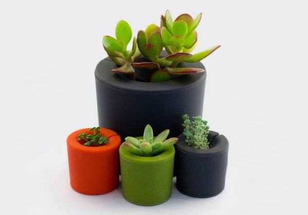 5 No-Fail Ways to Plant a Garden
