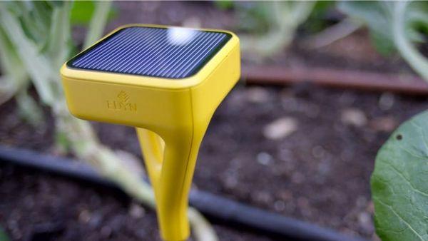 This Smartgarden Device Will FINALLY Make Your Garden Grow