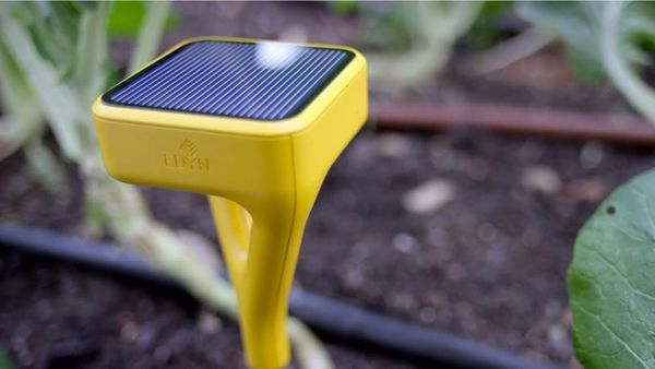 This Smartgarden Device Will FINALLY Make Your Garden Grow