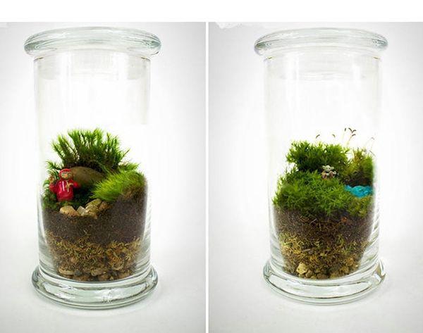 Nerd Alert: These Moss Terrariums Depict Scenes From Movies