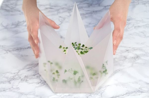 The MicroGarden Is a Foldable Garden, Small Enough for Your Tabletop