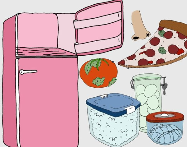 Newsflash: You're Storing Food Wrong — Here's How to Do it Right
