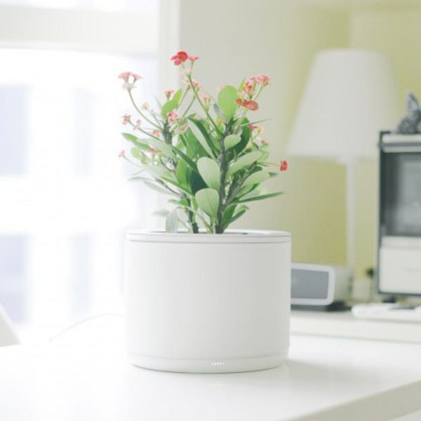This High-Tech Planter Will Make Sure You Never Kill Another Plant