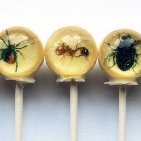 The BritList: Folding Kayaks, Insect Lollipops + More