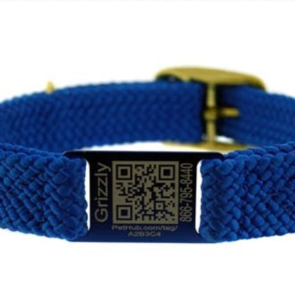 A Dog Collar For The Facebook Generation