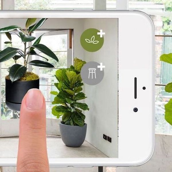 Use This Genius App Before You Buy Your Next Plant