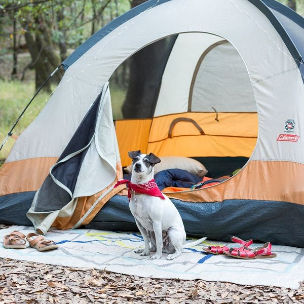 How to Have the Ultimate Girls Weekend Camping Trip