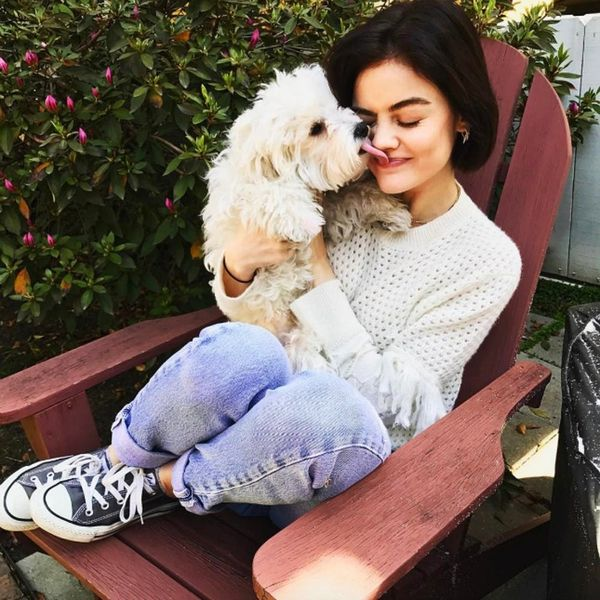 11 Pics of Celebrities and Their Dogs That'll Brighten Your Day