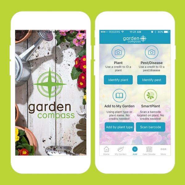 9 Apps to Help You Grow the Perfect Spring Garden
