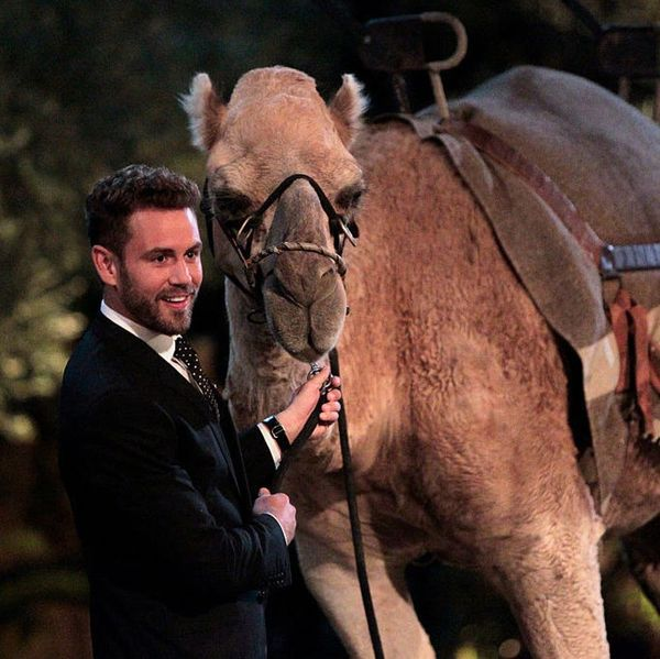 The Bachelor Recap: Potential Villains, Red Dresses and Predictions