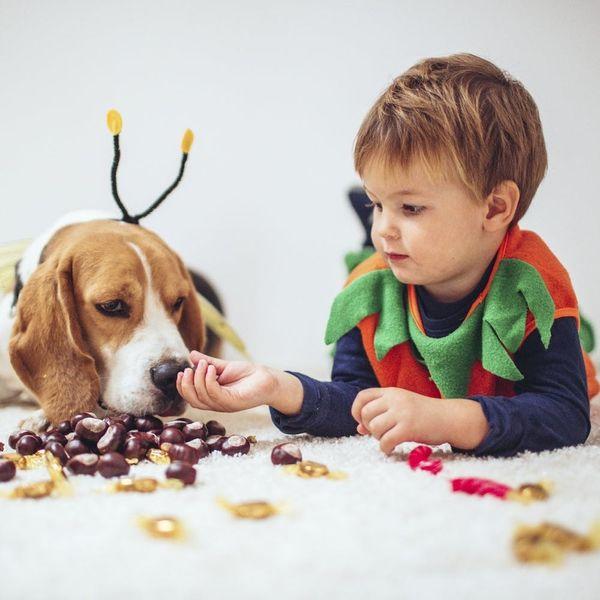 5 Ways to Keep Your Kids' Halloween Candy Craze Under Control