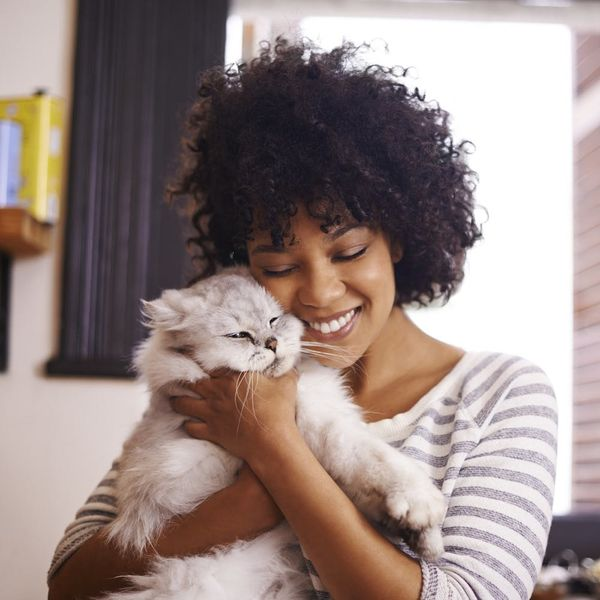 Calling All Cat Ladies: There's Now a Brush That Lets You Lick Your Cat