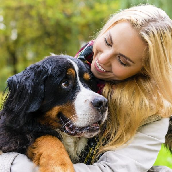 Rejoice! Dogs Don't Hate Hugs After All