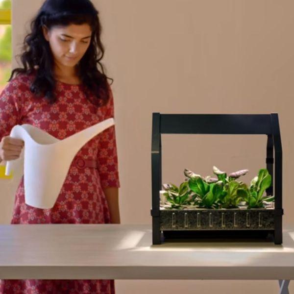 IKEA Is Introducing Countertop Hydroponic Planters for Indoor DIY Gardening