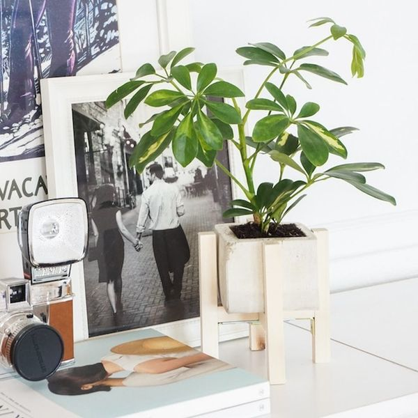 12 Planters and Pots to Hack from Urban Outfitters' Garden Section