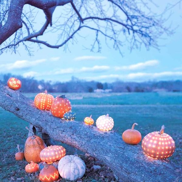 14 Creative Ways to Use Pumpkins inYour Fall Wedding