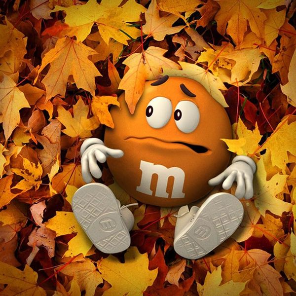 PSL Lovers, This New M&M's Flavor Is for You