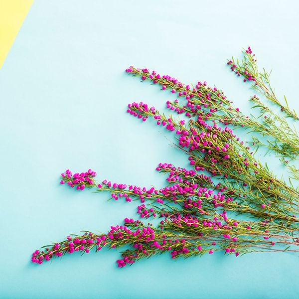 This Is How to Make Flowers Last FOREVER