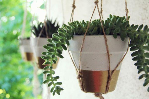 18 Indoor Garden Ideas to Green Your Apartment