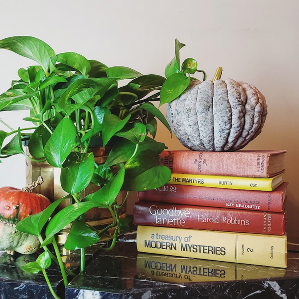 How to Use Books to Create Spooky Halloween Decorations
