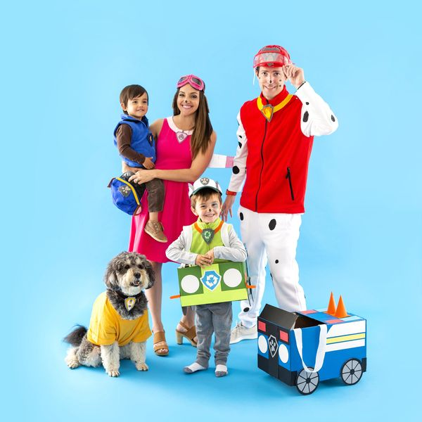 paw patrol family costume