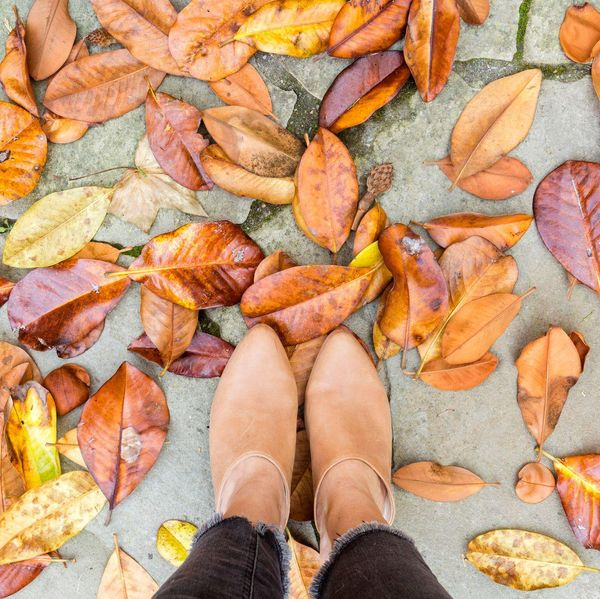 where to see fall foliage